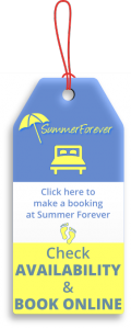 Bookings_SummerForever